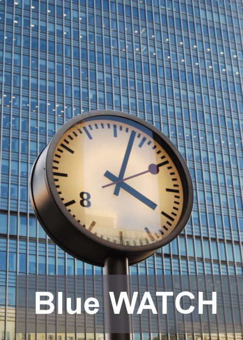blue-watch